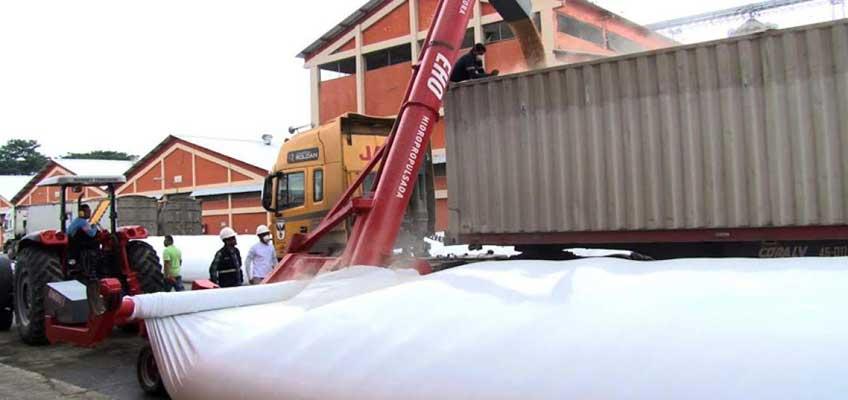 Ecuador exportará arroz a Colombia