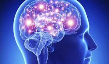 Leciones Cerebrales