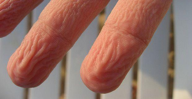 ¿Por qué se arrugan las manos al contacto con el agua en tiempos prolongados?