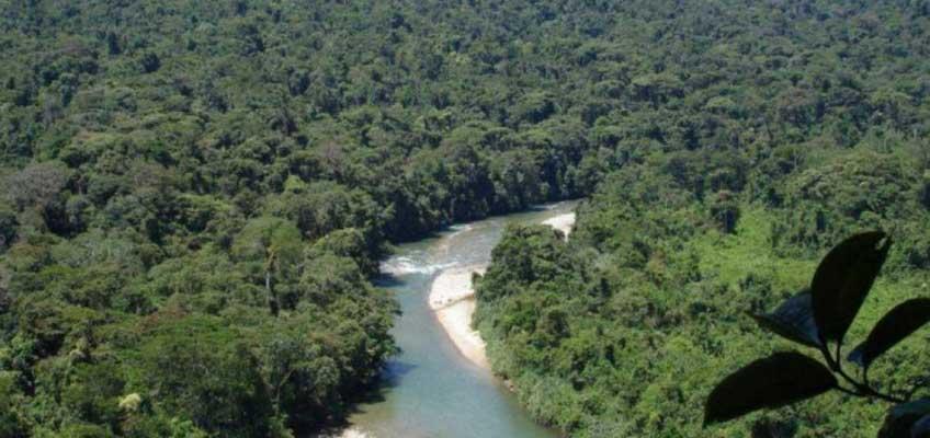 Ecuador es el segundo país en terminar la fase de preparación para REDD+