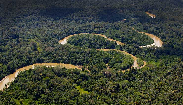 Amazonía, Especies, Científicos, Descubrimiento