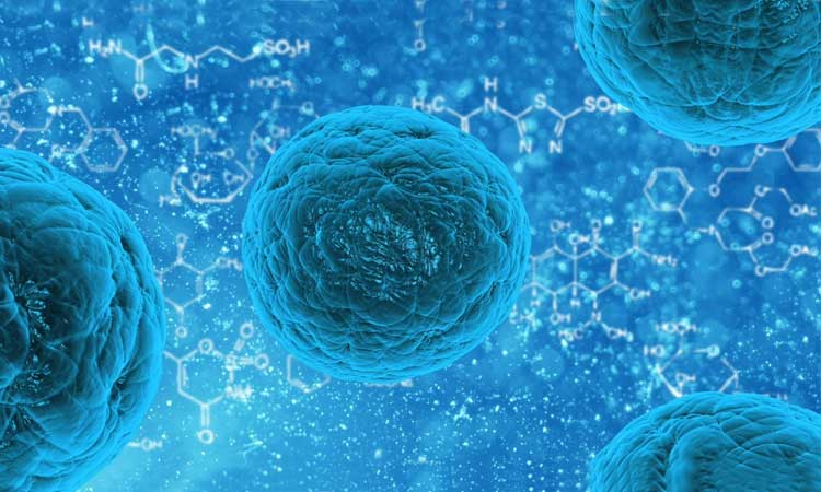 Científicos, Ciencia, Descubrimiento, Células