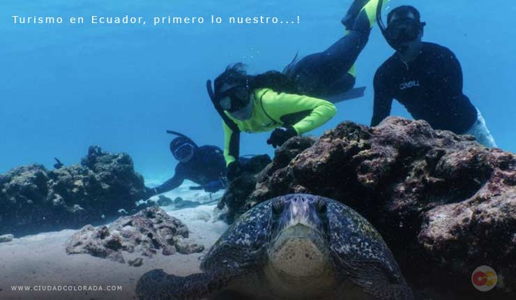 Galápagos Feriado de mayo Ecuador