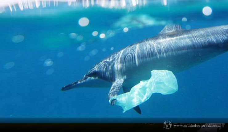 Comprométete con un planeta #SinContaminación por plásticos
