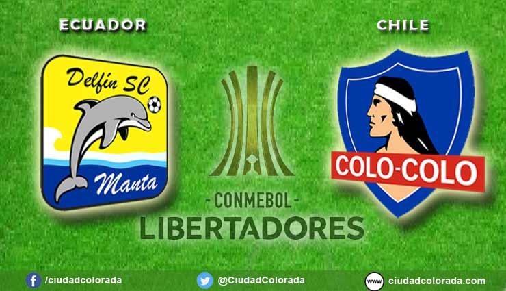 Delfin, Colo Colo, Fútbol, Copa Libertadores,