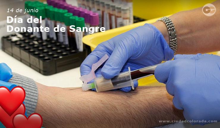 El 14 de junio de cada año se celebra el Día Mundial del Donante de Sangre