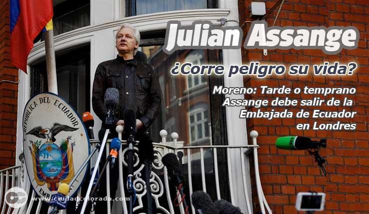 Lenin Moreno podría quitar el asilo a Julian Assange y dispone que se retire cualquier tipo de seguridad para el ciberactivista
