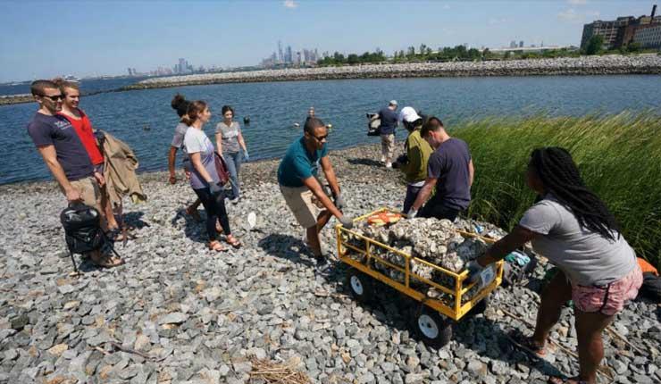 Nueva York busca recuperar su título de capital mundial de las ostras