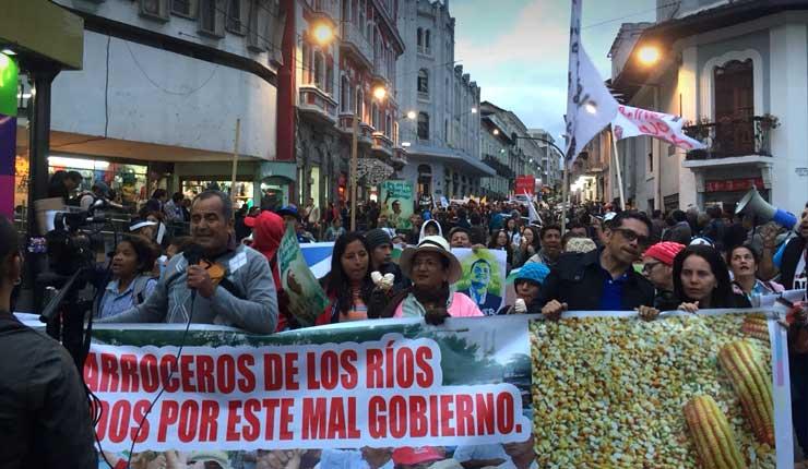 Marchan en Ecuador contra medidas implementadas por el Gobierno