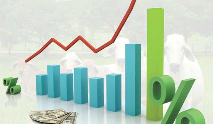 En enero se decidirá si se revisan las tasas de interés de la banca, para el sector agrícola y ganadero