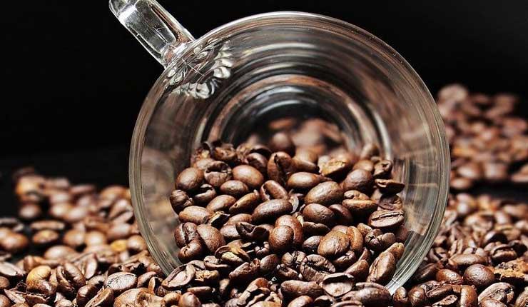 Granos de Cafe, Ciencia, Salud,