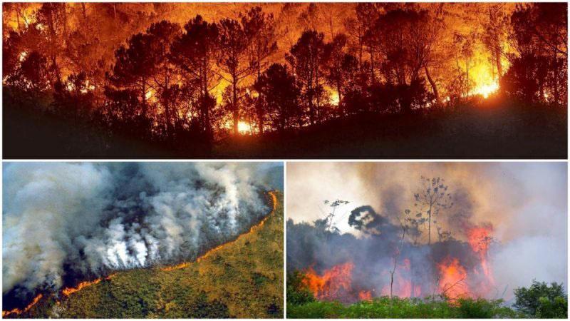incendio destruye la selva del Amazonas