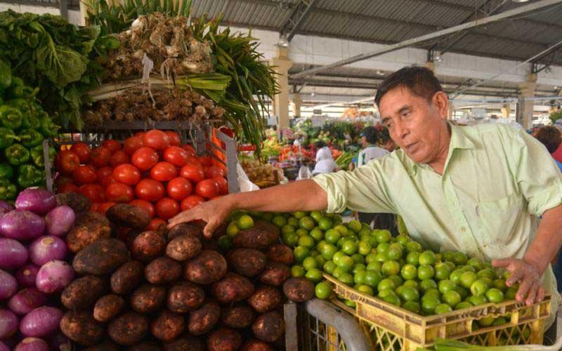 Papa, Economía, Ecuador,