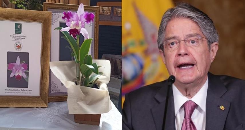 Orquídea Guillermo Lasso